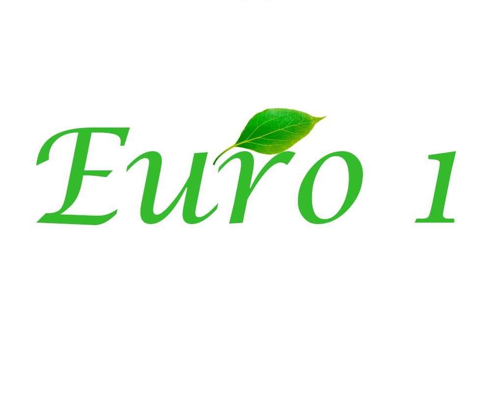 Экологический класс евро 1 стандарт, таблица
